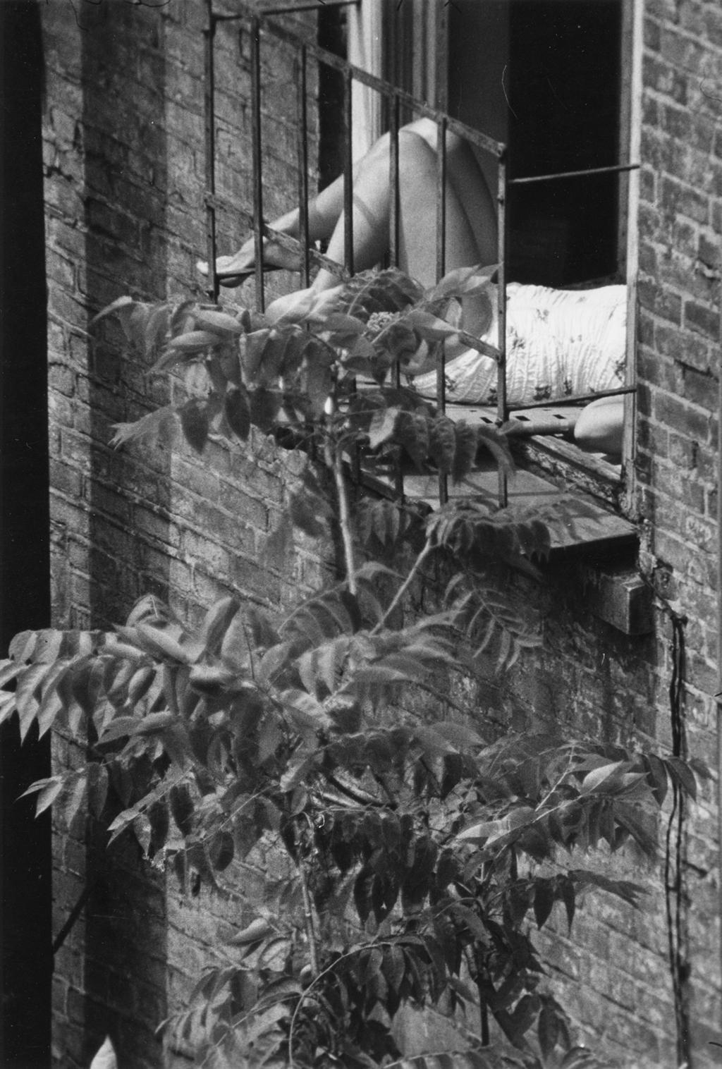 New York, 1960. - (André Kertész)