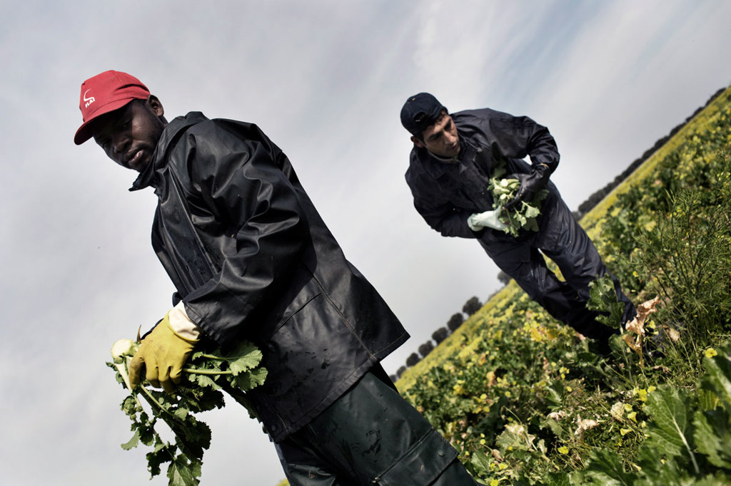 Lavoratori stagionali immigrati in un campo di Brindisi, il 3 aprile 2014. - Patrick Tombola, Laif/Contrasto
