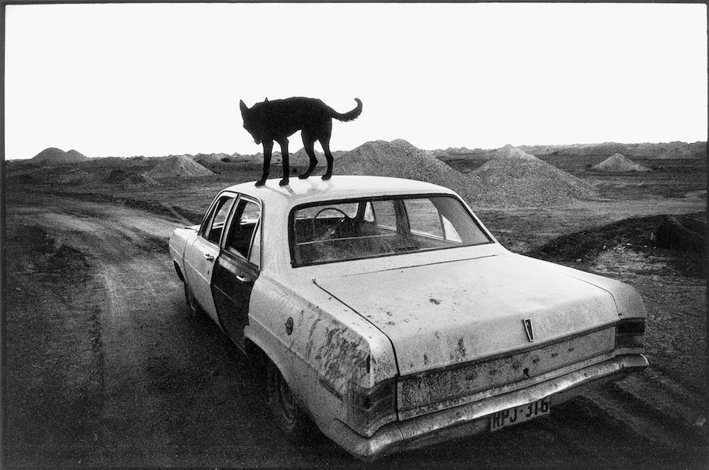 Una volta Wim Wenders ha fotografato i suoi viaggi in giro per il mondo