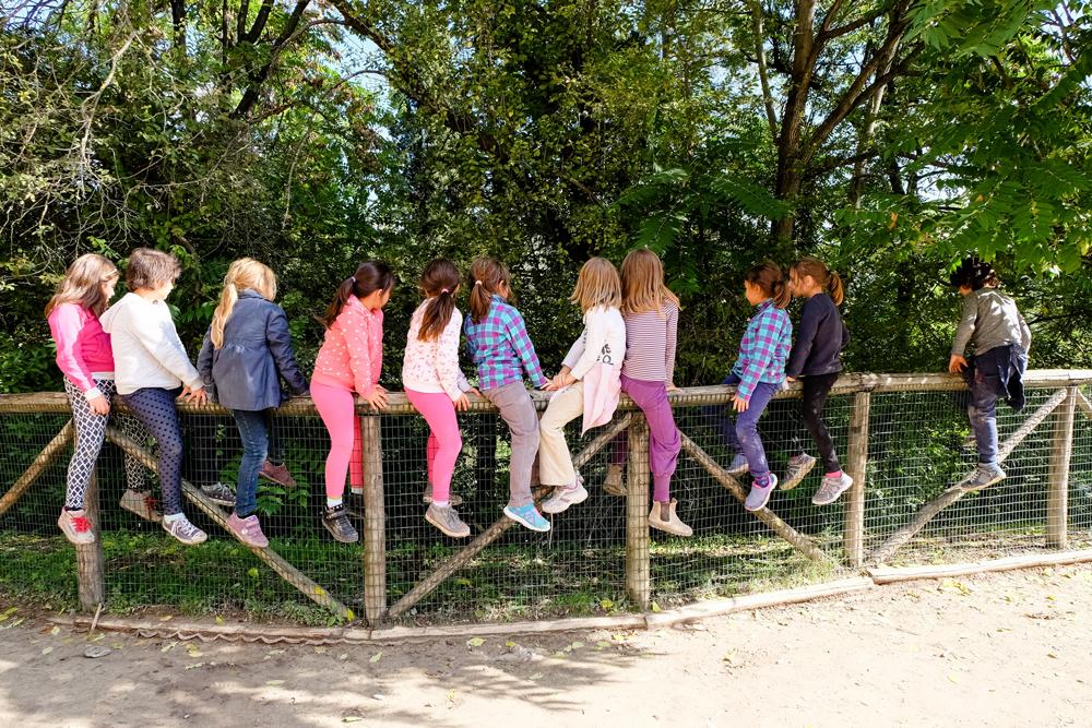 In una scuola di Bologna c'è un'isola di libertà per i bambini