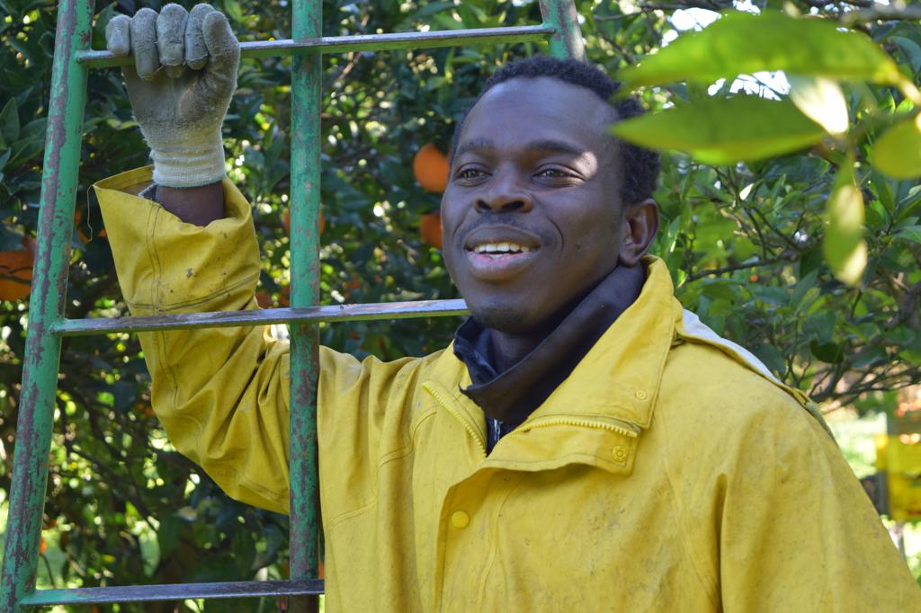 Pape Badje, un agricoltore che lavora per l'associazione Sos Rosarno.  - Annalisa Camilli, Internazionale