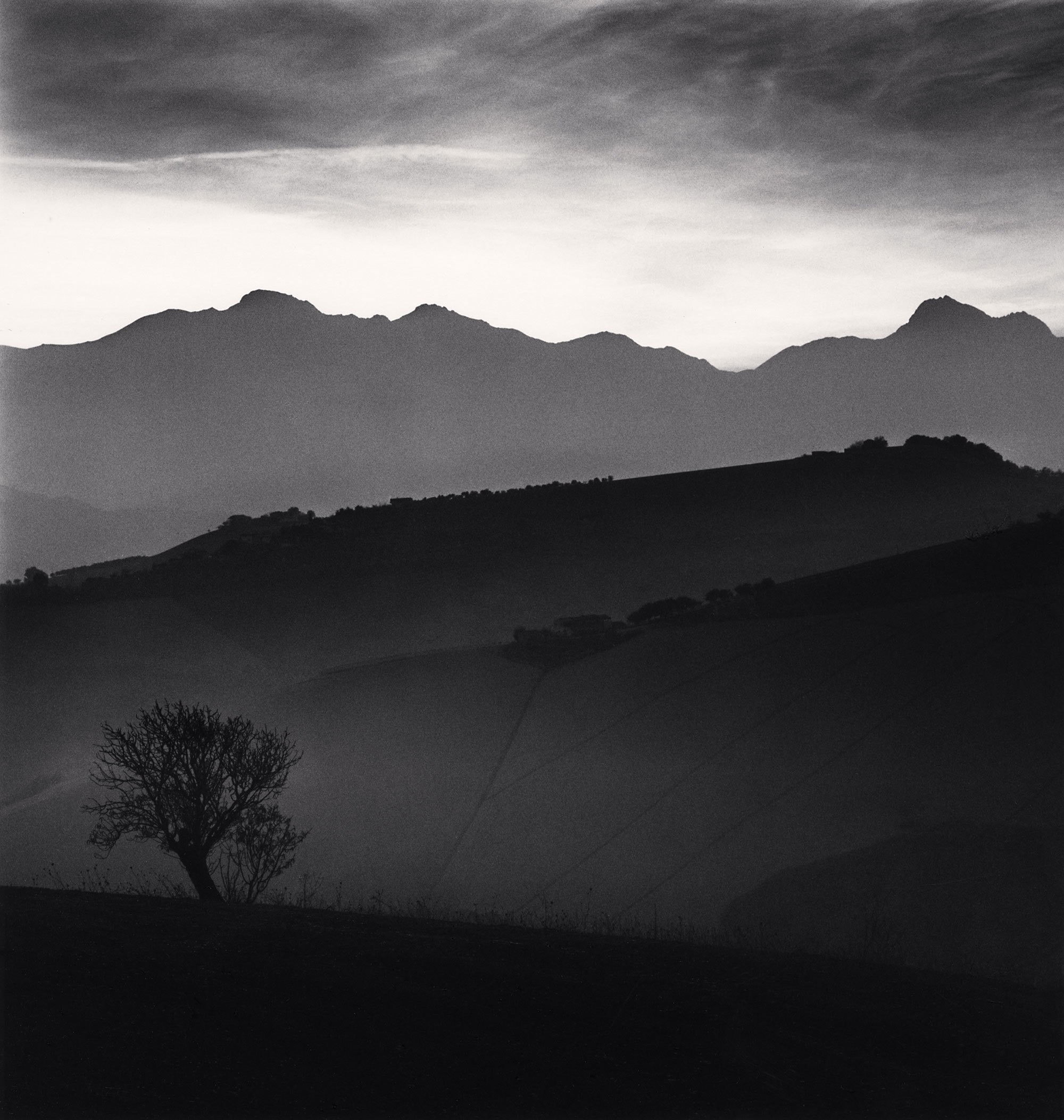 Tree and Gran Sasso mountain, Castilenti (Teramo), Abruzzo, 2015. - (Michael Kenna)