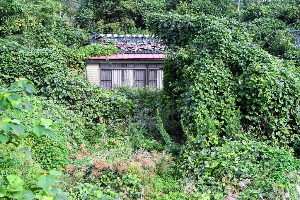 Una casa abbandonata a Namie, nella prefettura di Fukushima, 20 settembre 2017. - Asahi Shimbun/Getty Images