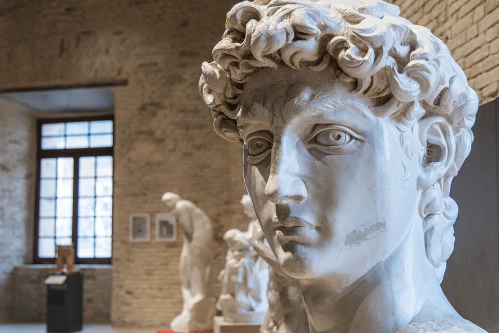 La testa del David di Michelangelo. - Luna Simoncini