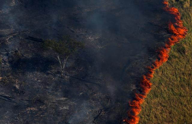 In Brasile l'ambiente sarà la prima vittima di una presidenz