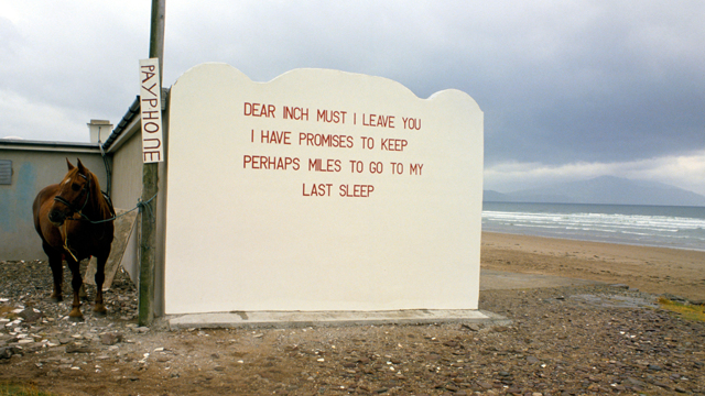La poesia rinasce su Instagram
