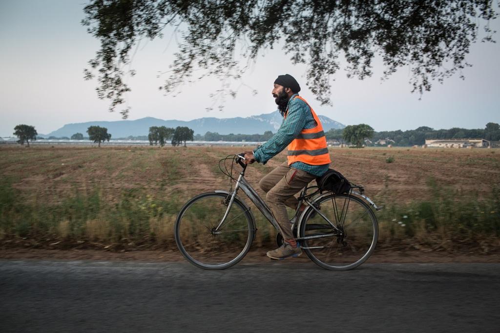 Un bracciante indiano va al lavoro in bici, Sabaudia, luglio 2015. - Maria Feck, Laif/Contrasto