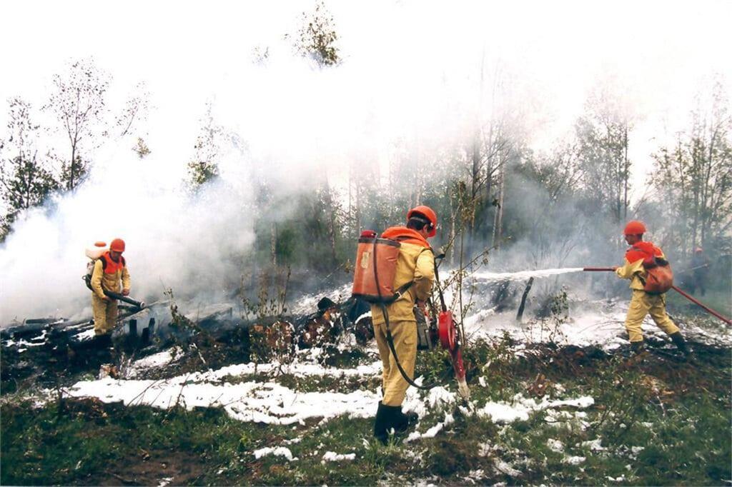 Vigili del fuoco durante un incendio in una foresta nella regione di Krasnojarsk, in Siberia, il 1 agosto 2019. - Russian federation service aviation forest protection/Epa/Ansa
