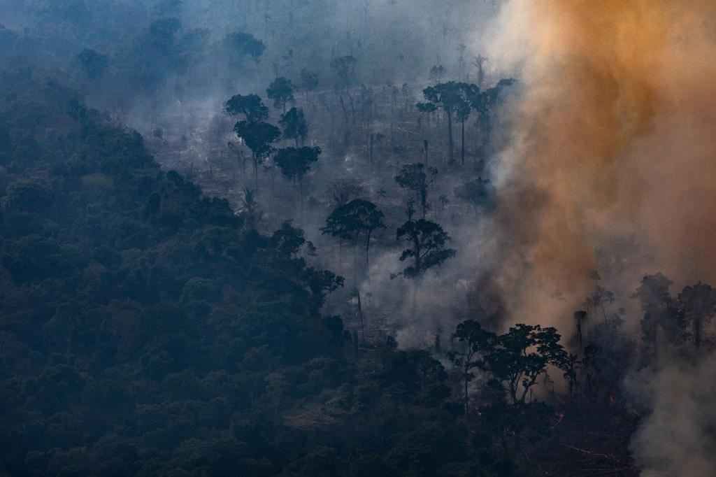L'Amazzonia brucia, ma non è una novità - Gwynne Dyer