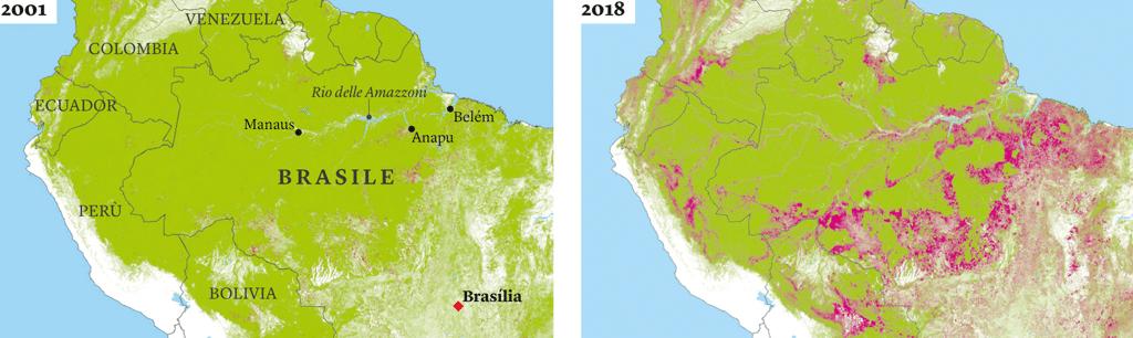 Due cartine mostrano a che punto è il processo di deforestazione. In viola sono indicate le zone che, per varie cause, sono prive di copertura boschiva. - Global Forest Watch