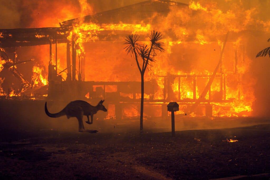Australia, arriva la pioggia: negli incendi morte 25 persone e 500mila animali