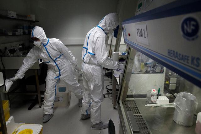Un nuovo mondo per la collaborazione scientifica
