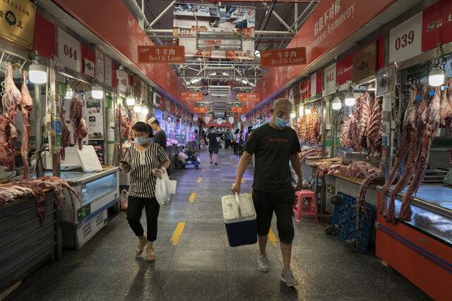 Tra gli allevatori di animali proibiti in Cina