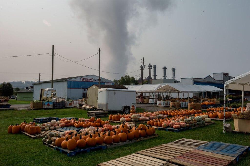 Zucche in vendita vicino a una centrale elettrica a Shamokin Dam, in Pennsylvania, 16 settembre 2020. - Andrew Lichtenstein, Corbis via Getty Images